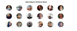 mingle2 member structure